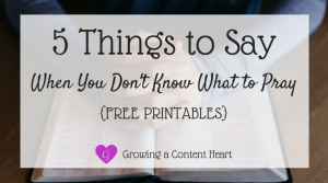 5 Things to Say Don't Know What to Pray - Growing a Content Heart