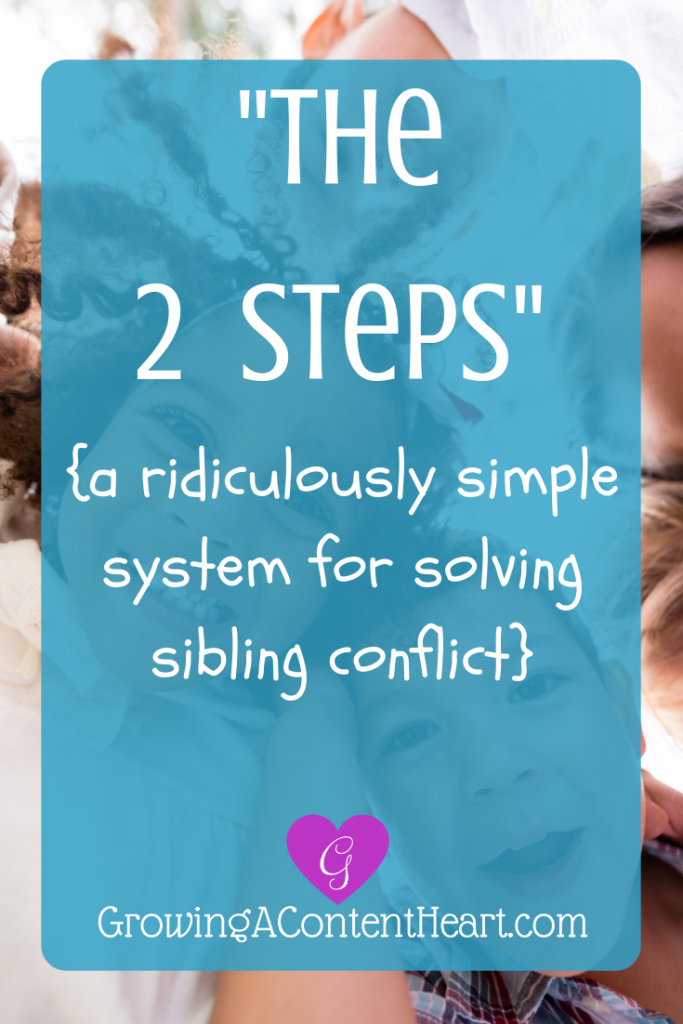 """The 2 Steps"" {solving sibling conflict}"