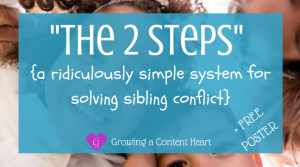 The 2 Steps Solving Sibling Conflict - Growing a Content Heart