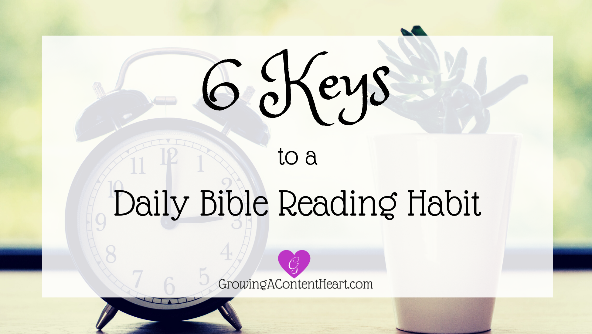 6 Keys to a Daily Bible Reading Habit - Growing a Content Heart
